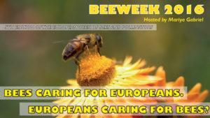 Bee_week