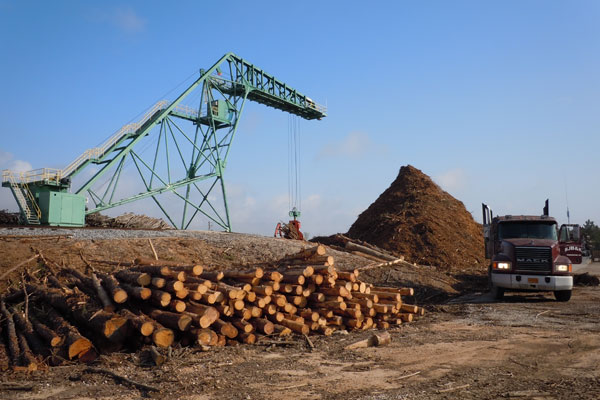 производство на пелети от дървесина