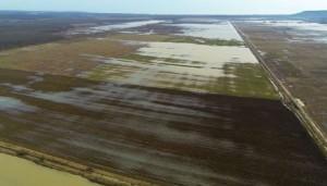 наводнени площи