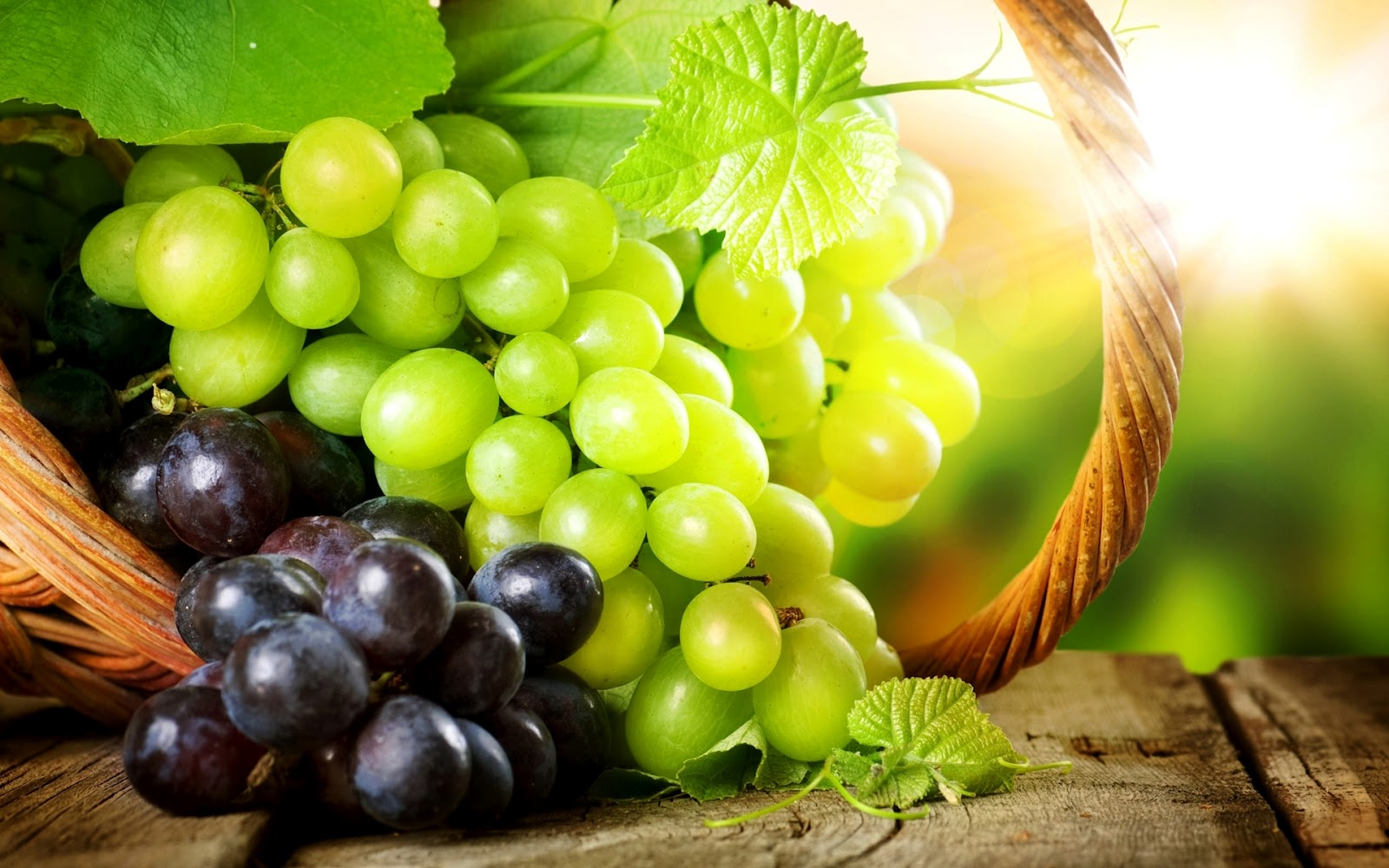 лозаро- винарски сектор