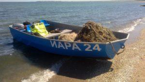 лодка на ИАРА