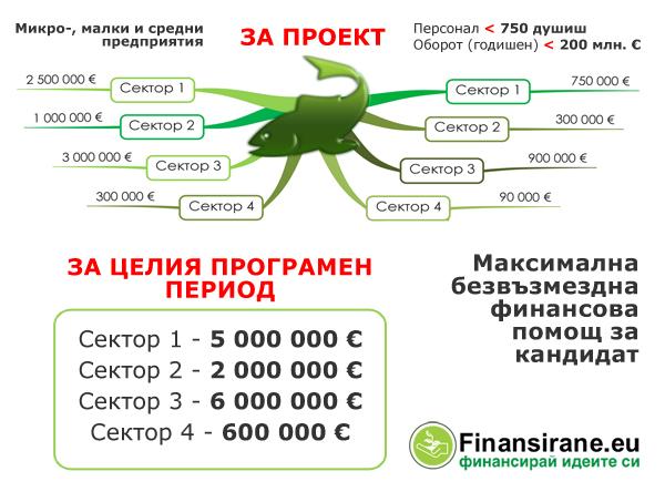 Максимална безвъзмездна финансова помощ
