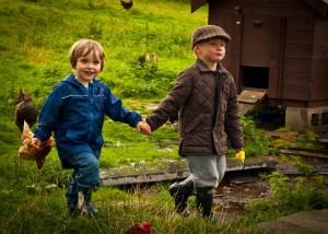 Програма Млад Фермер 2014-2020