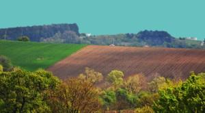 земя, нива