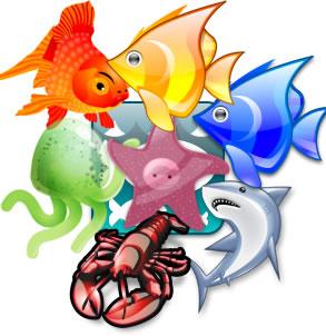 school_of_fish_1